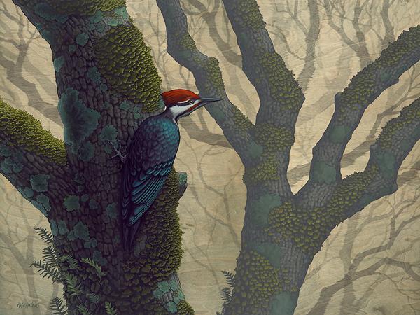 Woodpecker_600